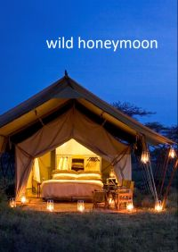 wild honeymoon